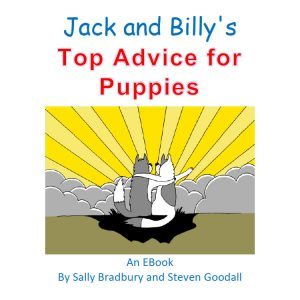 Jack and Billy's Top Advice for Puppies Ebook